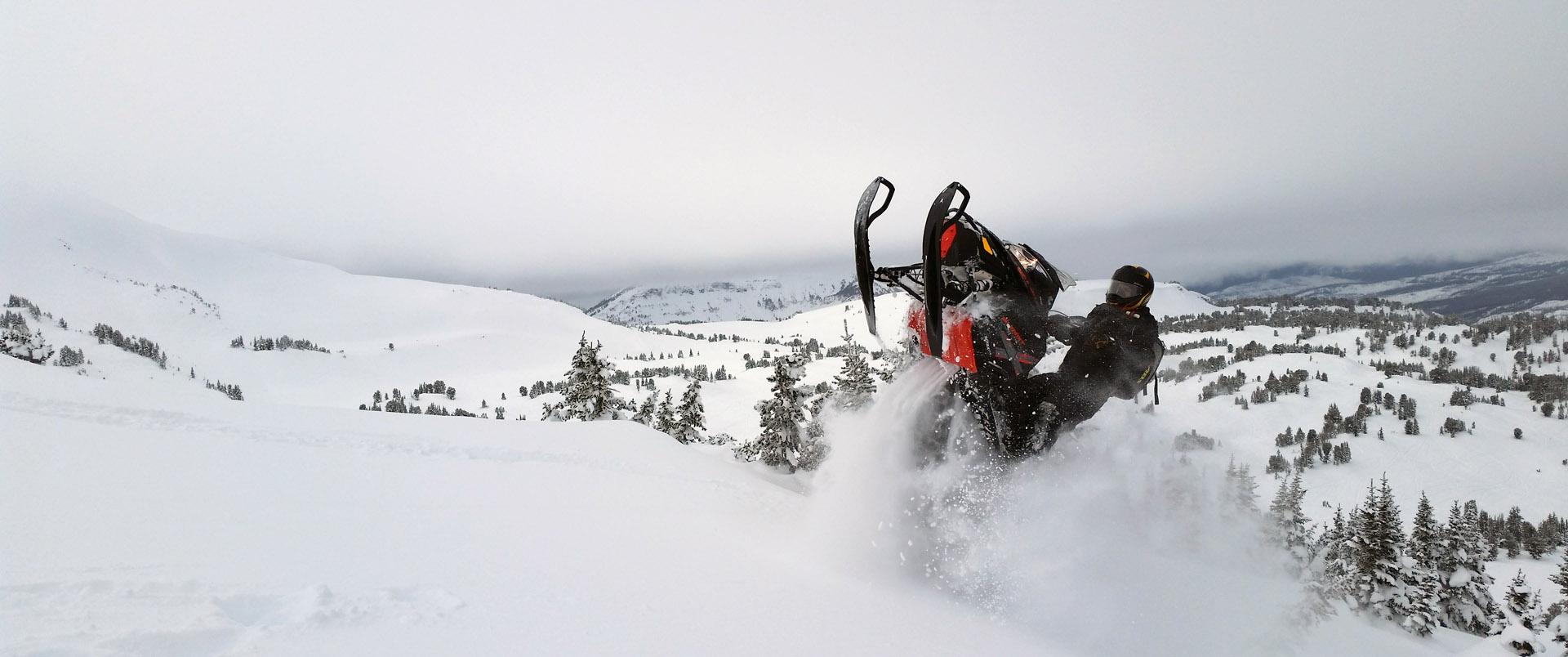 seth_sled